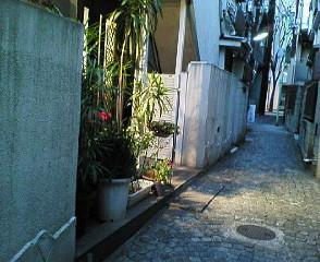 image/sayamayumi-2007-02-13T00:48:17-1.jpg