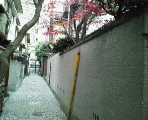 image/sayamayumi-2007-03-24T01:39:35-1.jpg